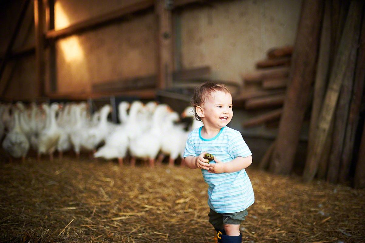 Leben auf dem Bauernhof - Stimmungsvolle Fotoreportage Bauernhof
