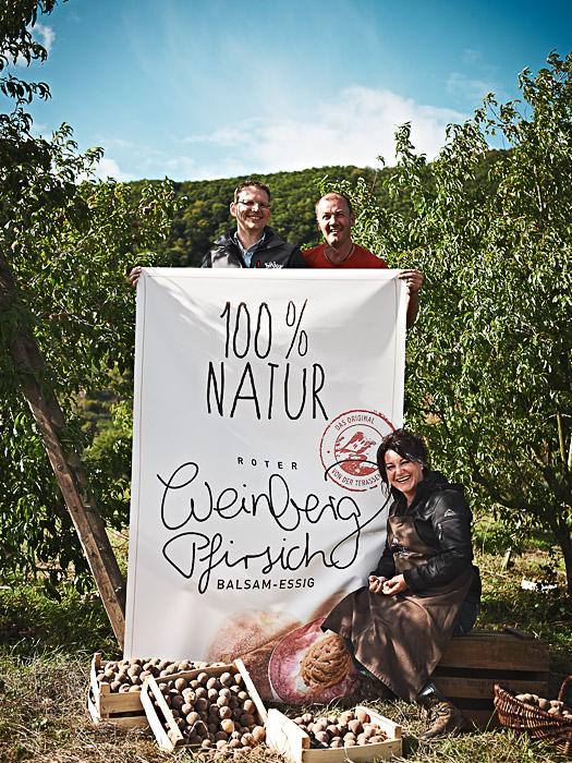 Ernte von roten Weinberg-Pfirsichen für Wajos und ASA Selection - stimmungsvolle Image und Produktfotografie Fotos: Anna Schneider / neon fotografie