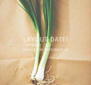 <span>Stockmaterial Gemüse Stills</span><i>→</i>