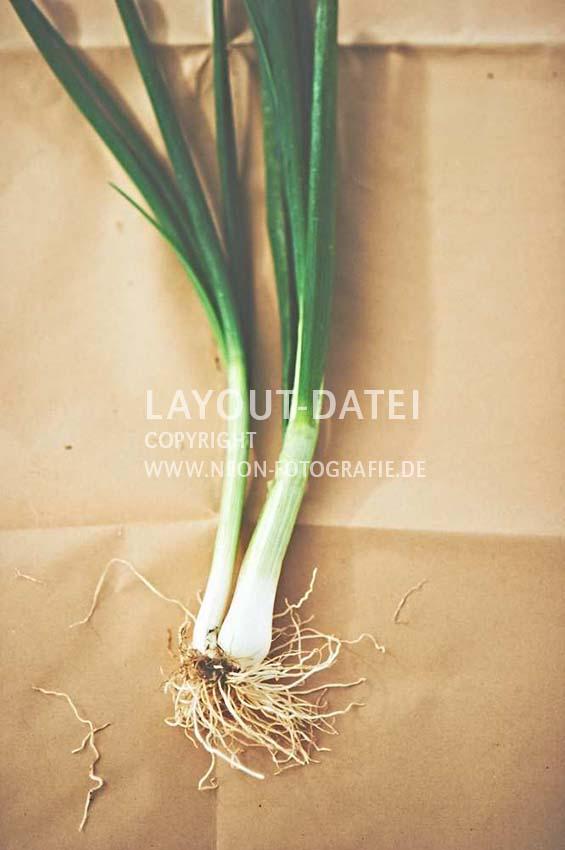 frische-lauchzwiebeln-gemuese-auf-packpapier-stills-moderne-food-stockfotografie-neon