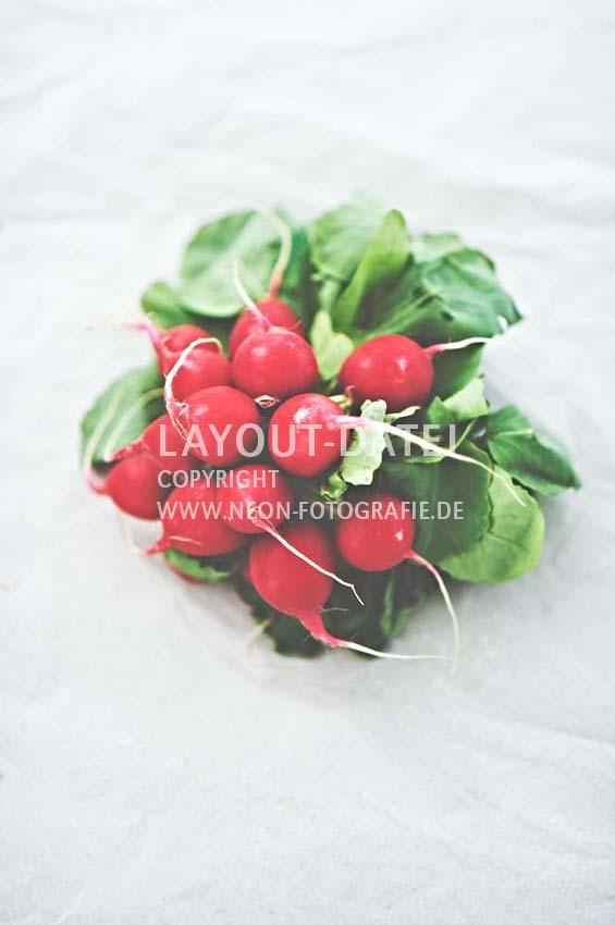 frische-radieschen-auf-papier-gemuese-stills-freiraum-moderne-food-stockfotografie-neon