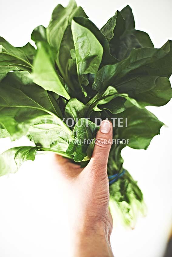 stockfotografie-spinat - hand-haelt-bund-frischen-blattspinat-moderne-foodfotografie-neon-fotografie-anna-schneider.jpg