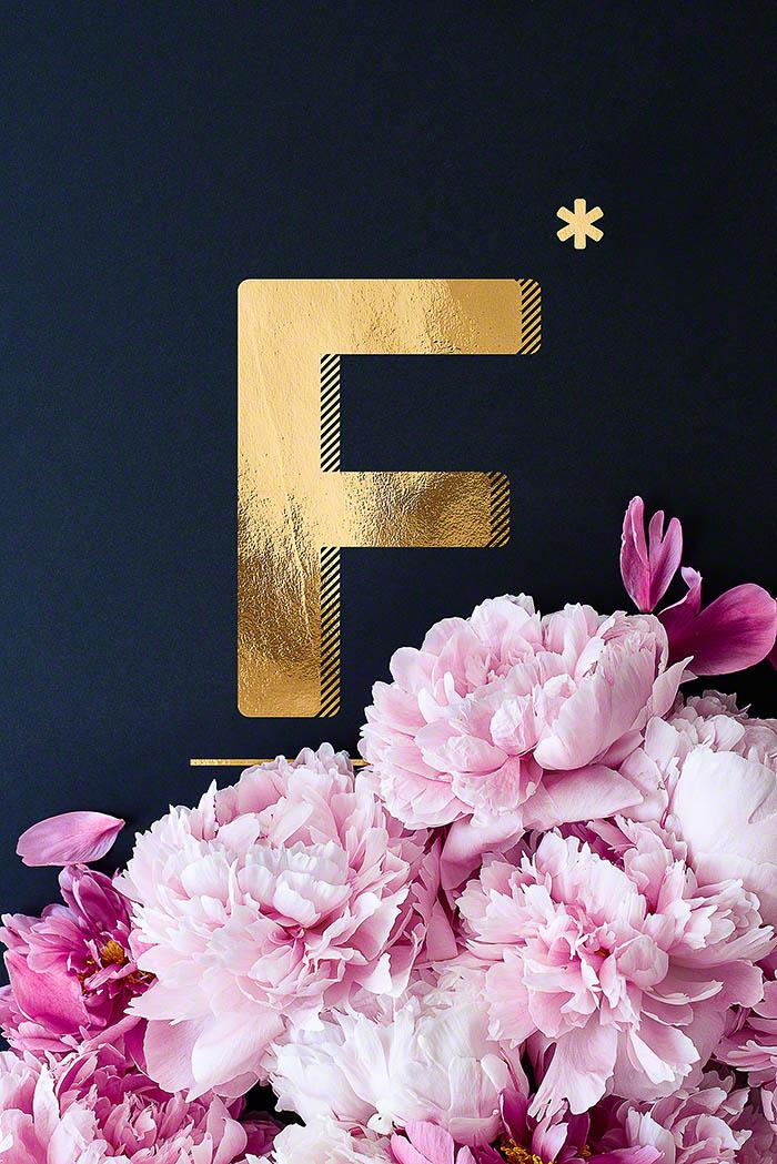 F - Goldenes Alphabet auf schwarzem Hintergrund mit Pfingstrosen