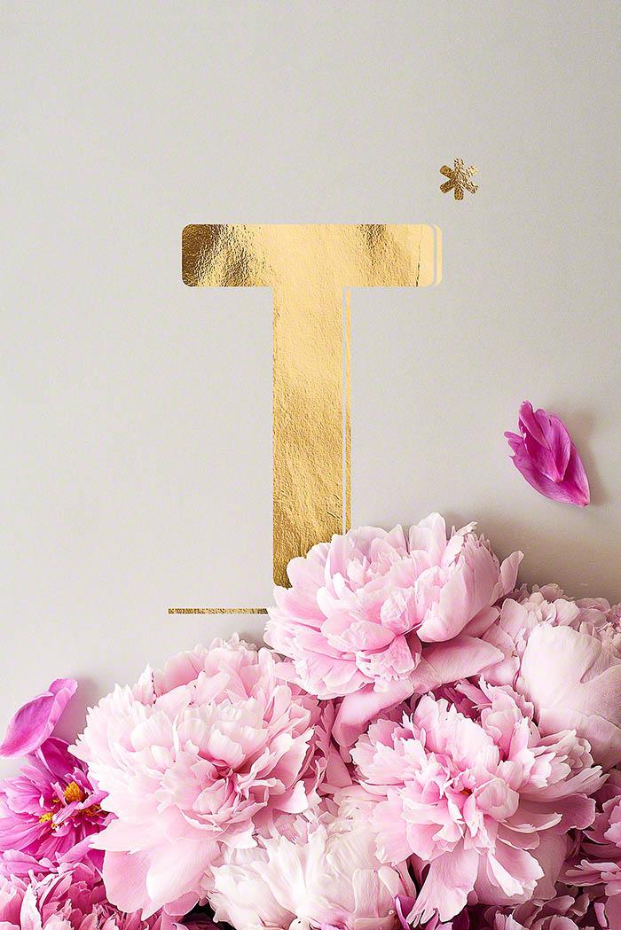 T - Goldenes Alphabet auf schwarzem Hintergrund mit Pfingstrosen