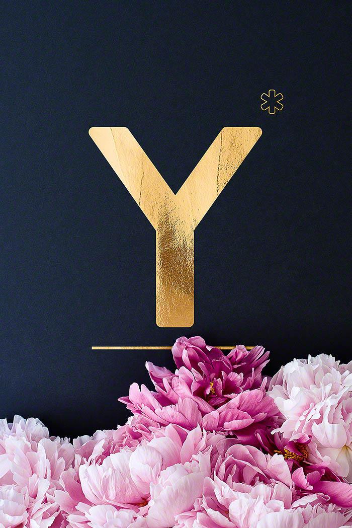 Y - Goldenes Alphabet auf schwarzem Hintergrund mit Pfingstrosen