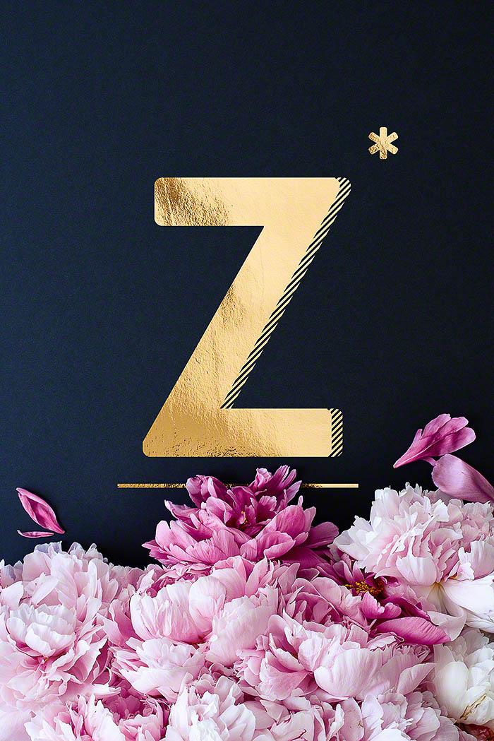 Z - Goldenes Alphabet auf schwarzem Hintergrund mit Pfingstrosen